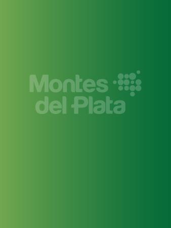 Plan de Manejo Forestal Grupo de Certificación 2019