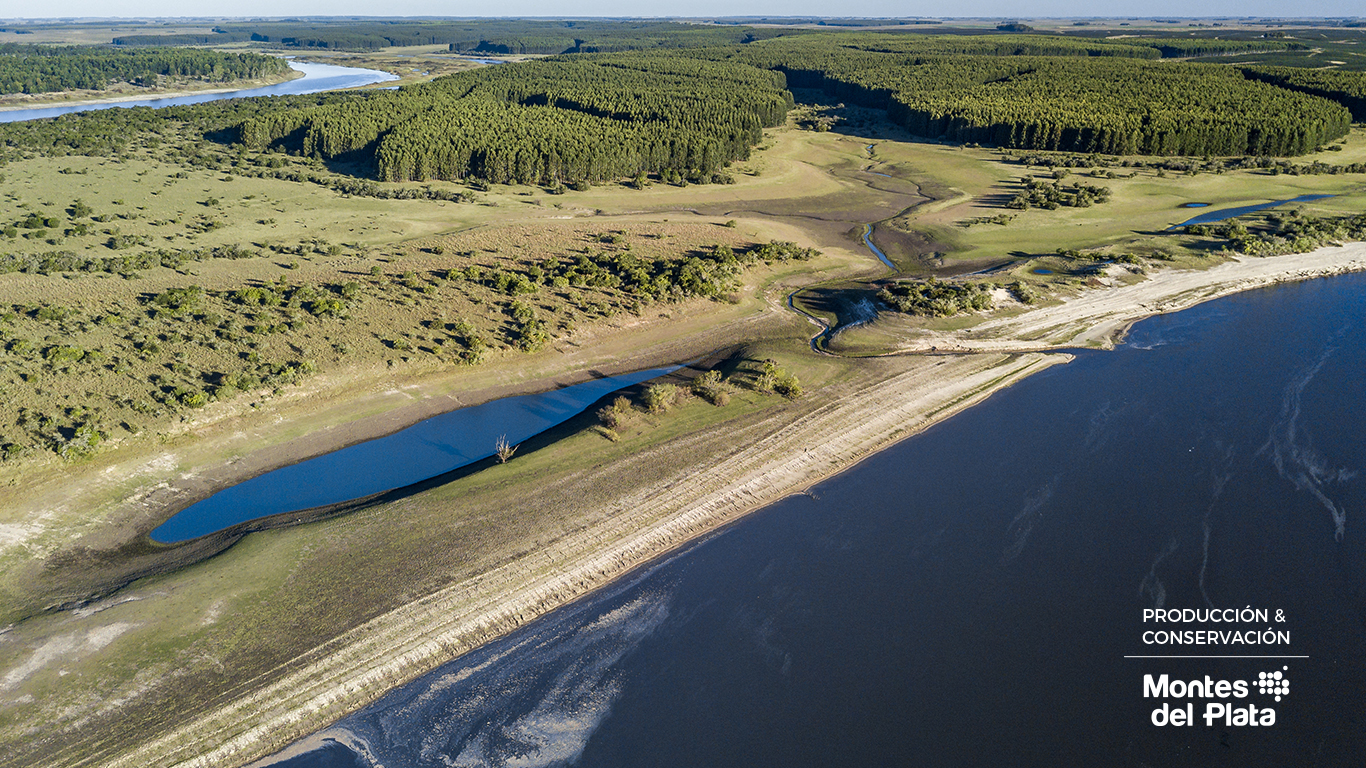 Rincón del Río (Durazno) - Área de Alto Valor de Conservación