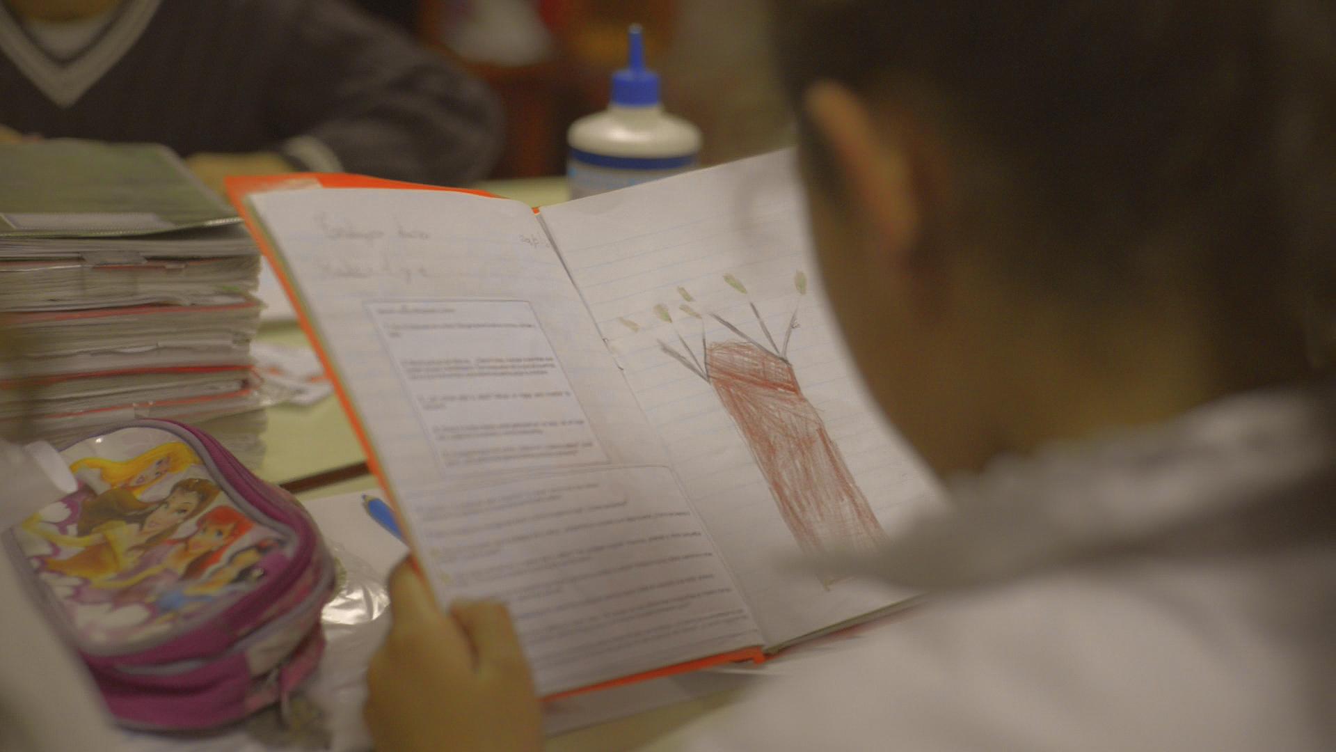 Lumin y Montes del Plata aportan herramienta educativa a través del Plan Ceibal