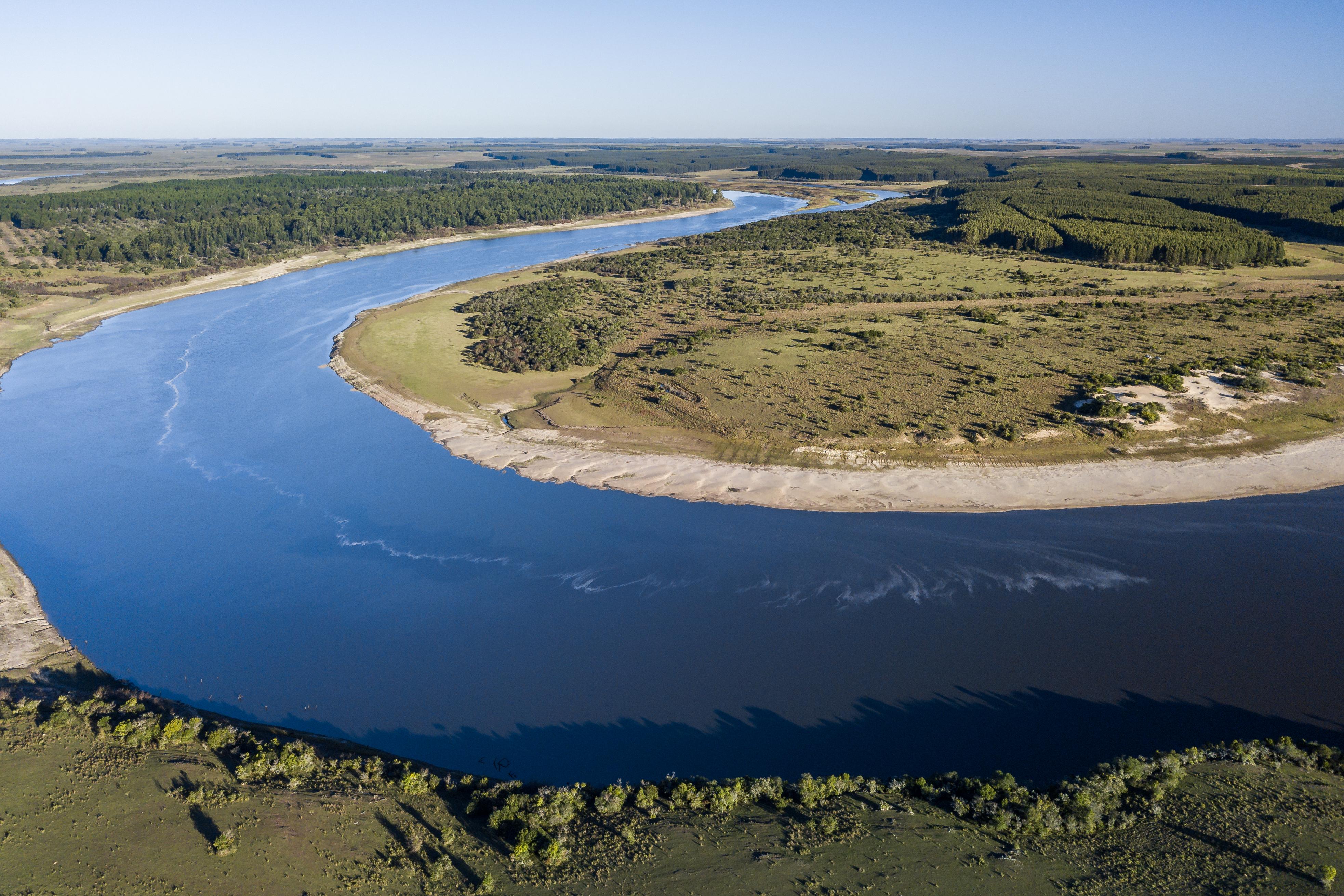 Conocé el secreto mejor escondido del corazón del país: Rincón del Río, nueva Área de Alto Valor de Conservación de Montes del Plata