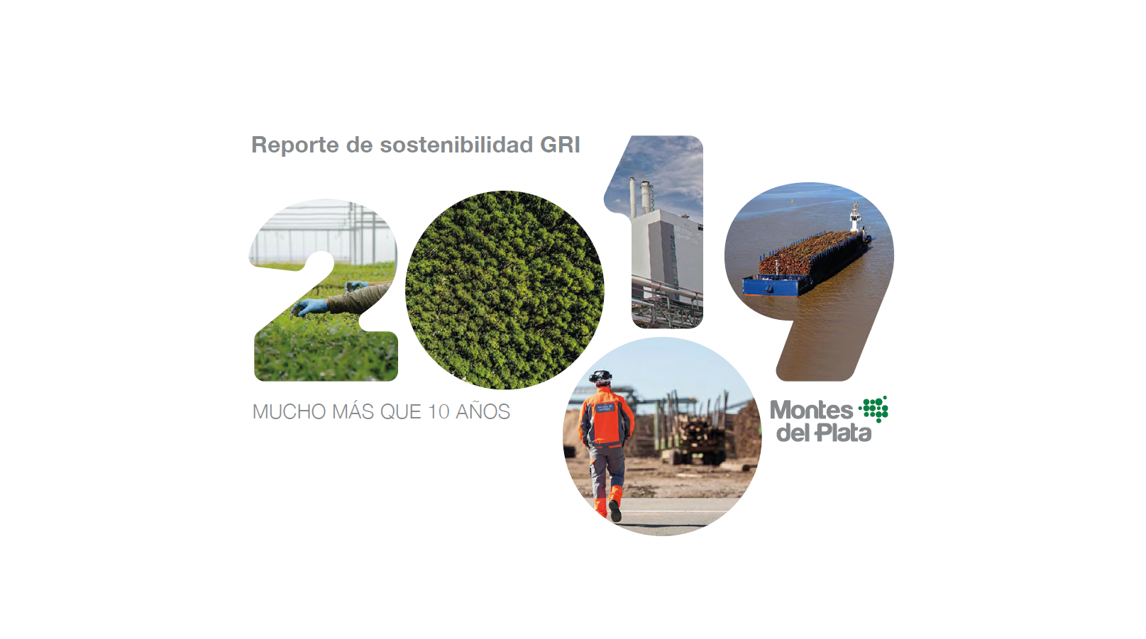 Reporte Sostenibilidad GRI 2019