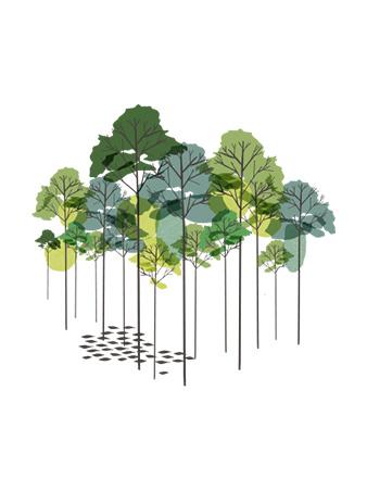 Resumen Público de Gestión Forestal 2019