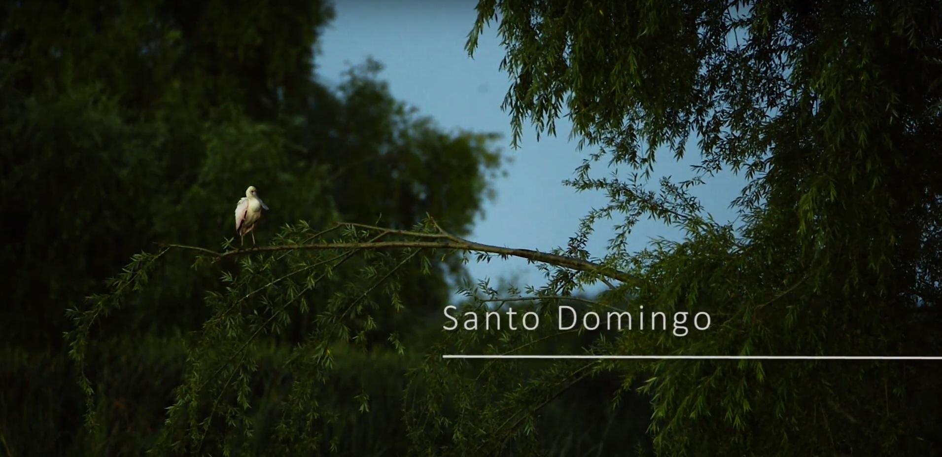 Santo Domingo - Área de Conservación