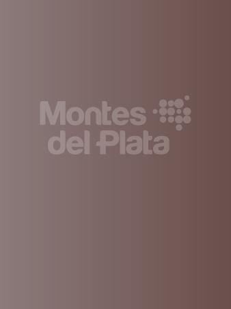 Informe público de Gestión Forestal 2013
